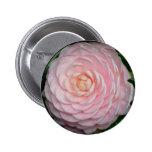 Sueño color de rosa pins
