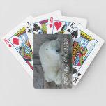 Sueño con icebergs cartas de juego
