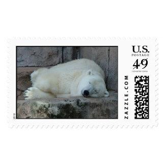 Sueño con icebergs sello