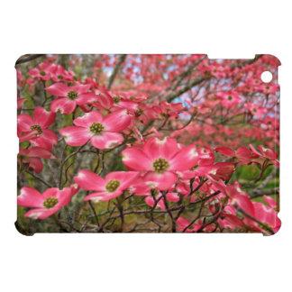 ¡Sueño con las floraciones rosadas del Dogwood en