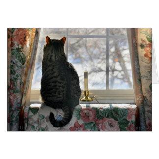 Sueño con navidad blanco - gato en la ventana tarjeta pequeña