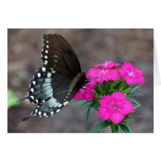 Sueño de la mariposa tarjeta de felicitación