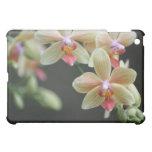 sueño de la orquídea de la cubierta del iPad
