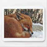 Sueño del día del Fox Alfombrillas De Raton