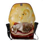 Sueño del gatito bolsas de mensajeria