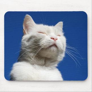 Sueño del gato blanco mousepads
