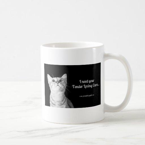 Sueño del gato tazas