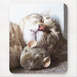 Sueño del gato y del ratón mousepad