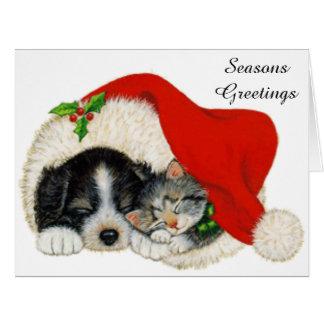 Sueño lindo del perrito y del gatito en un gorra tarjeta de felicitación grande