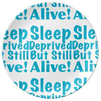 Sueño privado pero aún vivo en azul plato de cerámica