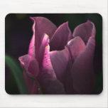 Sueño púrpura alfombrillas de ratón