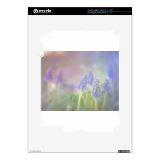 Sueño púrpura calcomanías para el iPad 2
