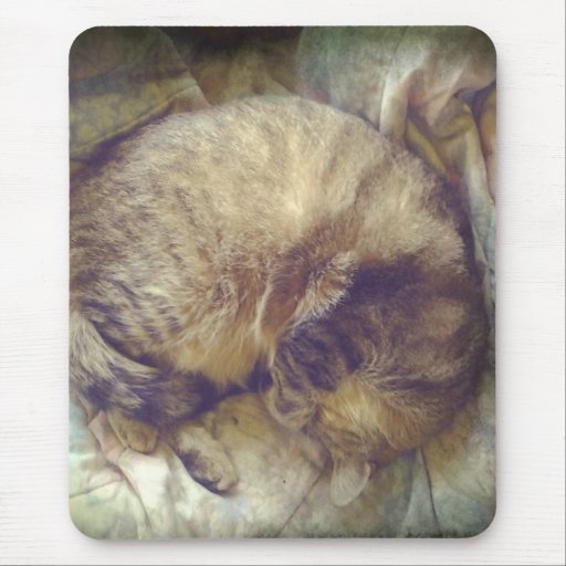 Sueño rescatado del gato de la sabana alfombrillas de raton