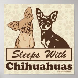 Sueños con las chihuahuas póster