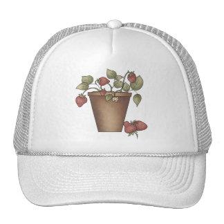 Sueños de la fresa gorras de camionero