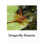 Sueños de la libélula tarjetas postales