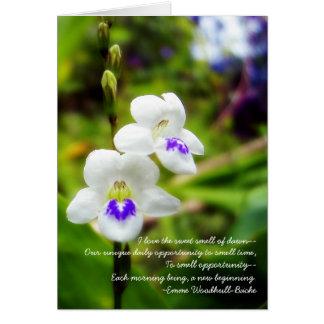 sueños de la mañana tarjeta de felicitación