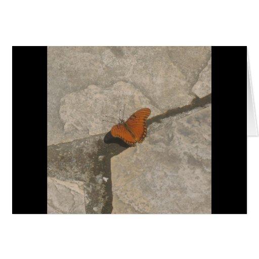 Sueños de la mariposa felicitaciones