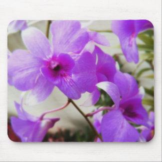 Sueños de la orquídea tapete de raton