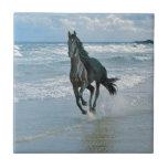 Sueños del caballo salvaje teja  ceramica