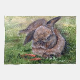 Sueños del conejito toalla