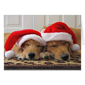 Sueños del navidad del golden retriever felicitaciones