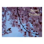 ¡Sueños dulces! Flores del rosa del sitio de los c Posters