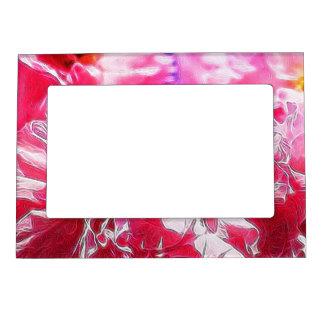 Sueños florales 03 rosas fuertes marcos magneticos de fotos