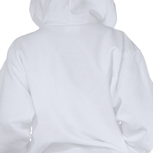 Suéter con capucha de los muchachos Wizard101 - Sudaderas