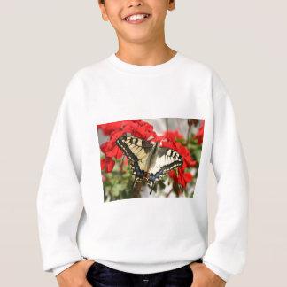 Suéter de Swallowtail del anís