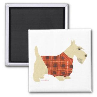 Suéter de trigo de Terrier del escocés Imanes De Nevera