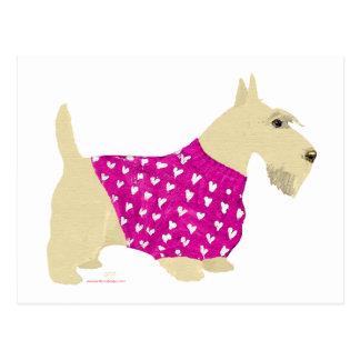 Suéter de trigo de Terrier del escocés Tarjeta Postal