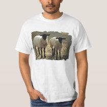Suffolk Sheep Pastoral Pasture or Barnyard Scene T-Shirt