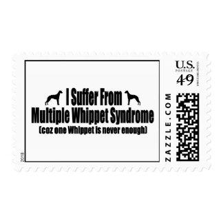 Sufro del síndrome múltiple de Whippet Sello