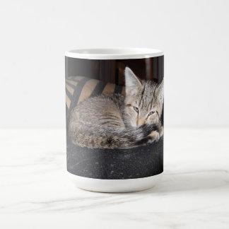 Sug Sleepin Coffee Mug