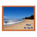 Sugar Beach, Kihei, Hawaii, Maui No Ka Oi Postcard