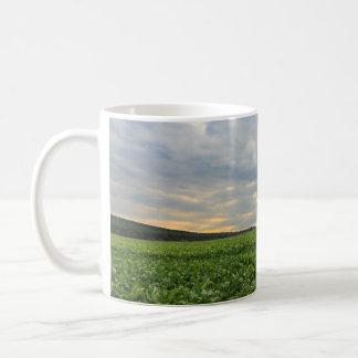 Sugar Beet Field at Sunset Coffee Mug