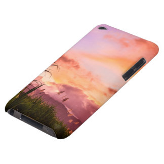 Sugar Cane Blossom at Sunset iPod Touch Cases