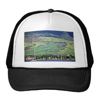 Sugar Cane Fields - Lahaina, Maui Trucker Hats