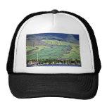 Sugar Cane Fields - Lahaina, Maui Trucker Hat
