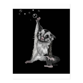 Sugar Glider Bubbles Postcard