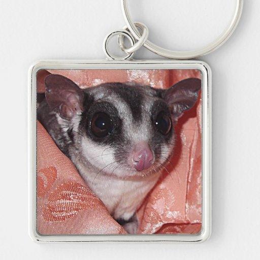 Sugar Glider Close-Up in Pink Silk Silver-Colored Square Keychain