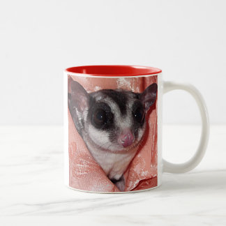 Sugar Glider Close-Up in Pink Silk Mug