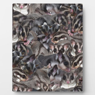 Sugar Glider Collage to customise. Plaque