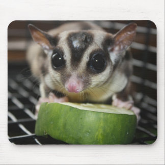 Sugar Glider Cucumber Mouse Pad