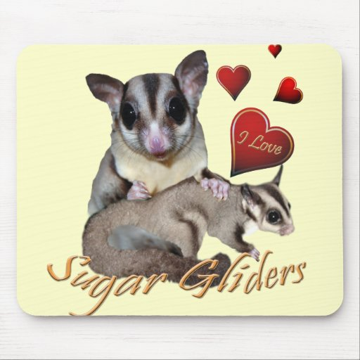 Sugar Glider Flowers and Hearts Mouse Pad