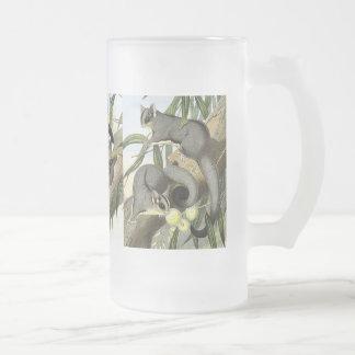Sugar glider frosted glass beer mug