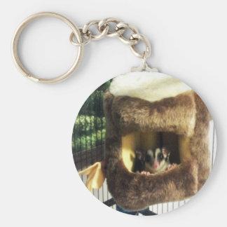 Sugar Glider in Furry Tree Truck Hanging Bed Basic Round Button Keychain