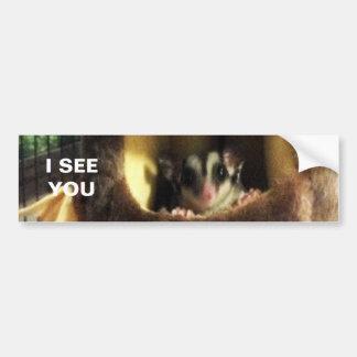 Sugar Glider in Furry Tree Truck Hanging Bed Bumper Sticker