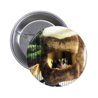 Sugar Glider in Furry Tree Truck Hanging Bed Button